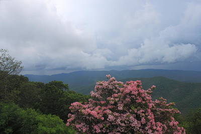 Photograph - Thunderstorm And Mountain Laurel Blue Ridge Mountains by John Burk