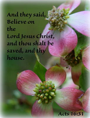 Photograph - Thy House Believe by Sheri McLeroy