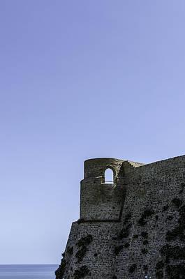 Photograph - Thy Majestie  by Andrea Mazzocchetti