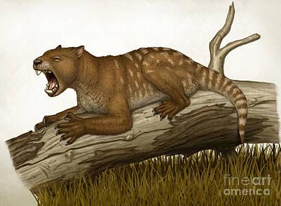 Thylacoleo Carnifex, A Marsupial Print by Heraldo Mussolini