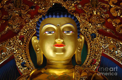 Photograph - Tibetan Buddha 9 by Bob Christopher
