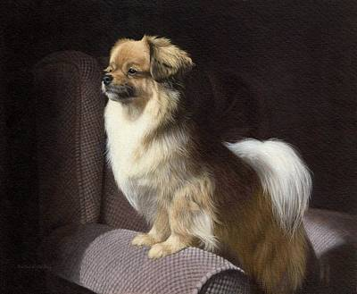 Domestic Painting - Tibetan Spaniel Painting by Rachel Stribbling