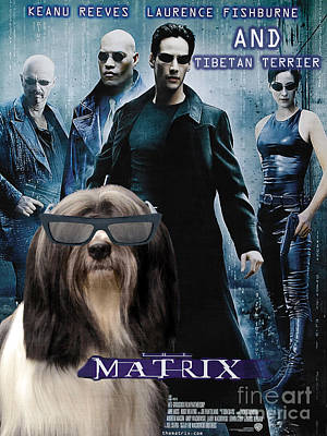 Painting - Tibetan Terrier Art - Matrix Movie Poster by Sandra Sij