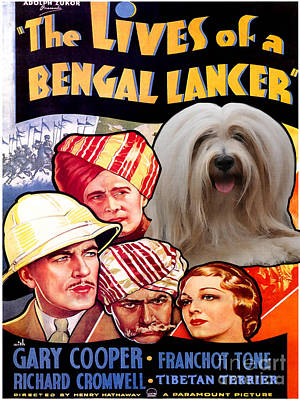 Painting - Tibetan Terrier Art - The Lives Of A Bengal Lancer Movie Poster by Sandra Sij