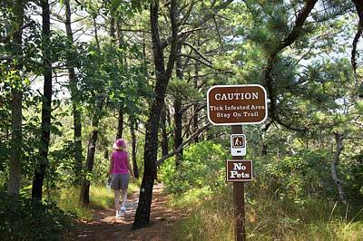 Wellfleet Photograph - Tick Warning Sign On Hiking Trail by Jim West