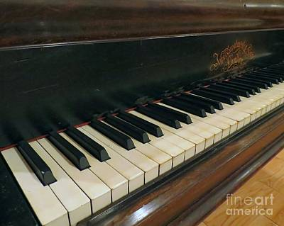 Photograph - Tickle The Ivories by Donna Cavanaugh