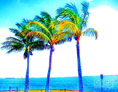 Photograph - Tickled Palms by Keri West