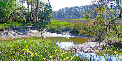 Photograph - Tidal Creek In The Savannah by Duane McCullough