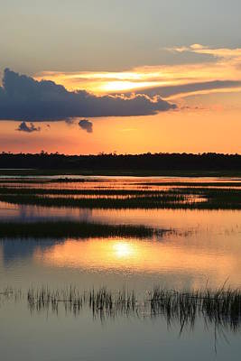 Tidal Marsh- Wilmington Nc Art Print