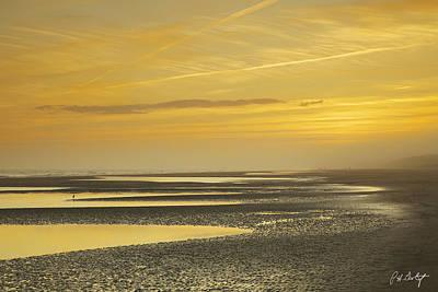 Coastline Digital Art - Tidal Ponds In Fog by Phill Doherty