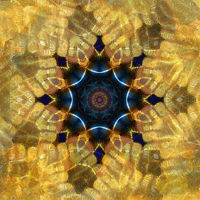 Photograph - Tidal Pool Mandala by Deborah Smith