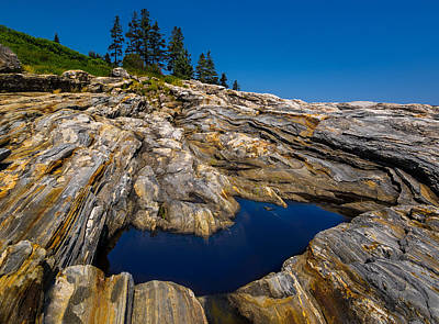 Print featuring the photograph Tidal Pool by Steve Zimic