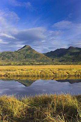 Tidal Slough And Mountain Scenic Along Print by Kevin Smith