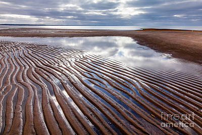 Photograph - Tide Flats by Susan Cole Kelly