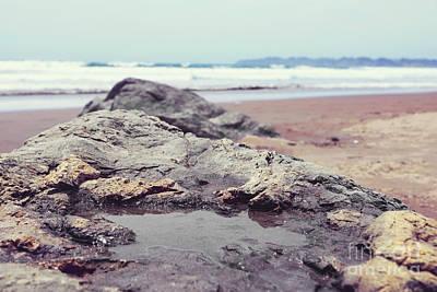 Stinson Beach California Photograph - Tide Pool by Cindy Garber Iverson