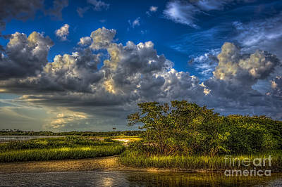 Wetlands Photograph - Tide Water by Marvin Spates
