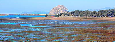 Photograph - Tidelands Of Morro Bay by AJ  Schibig
