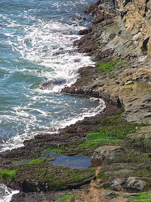 Photograph - Tidepools From Above by Jeff Lowe