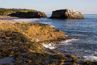 Photograph - Tidepools Overlooking Natural Bridge by Suzanne Luft