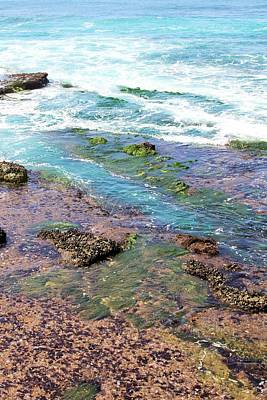 Photograph - Tidepools Sunset Cliffs by Jane Girardot