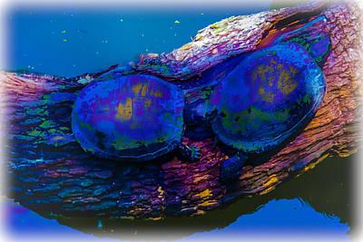 Animal Lover Digital Art - Tie Die Turtles by Renee Barnes