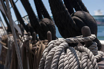Rope Photograph - Tied Up by Scott Campbell