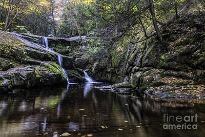 Photograph - Tiered Cascades Of Enders State Forest by Expressive Landscapes Fine Art Photography by Thom
