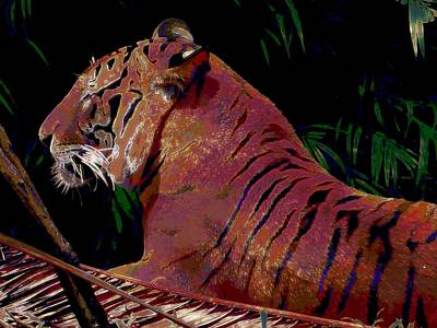 Art Print featuring the painting Tiger 2 by David Mckinney