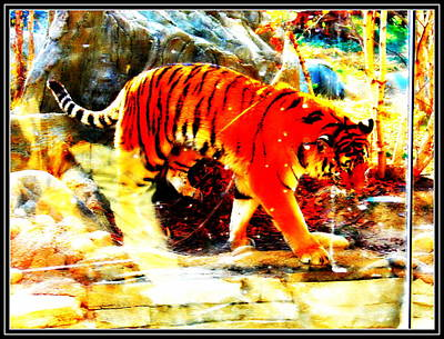 Photograph - Tiger-4 by Anand Swaroop Manchiraju