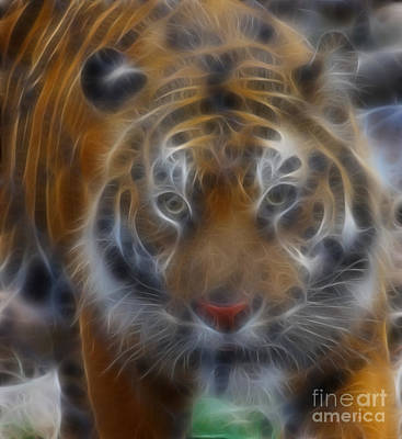 Tiger Fractal Photograph - Tiger-5316-fractal by Gary Gingrich Galleries