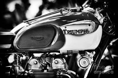 Photograph - Tiger 90 by Tim Gainey
