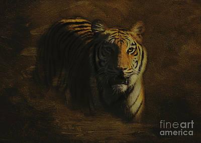 Southwick Photograph - Tiger Art by Jayne Carney