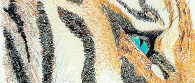 Art Print featuring the drawing Tiger Blue by Stephanie Grant