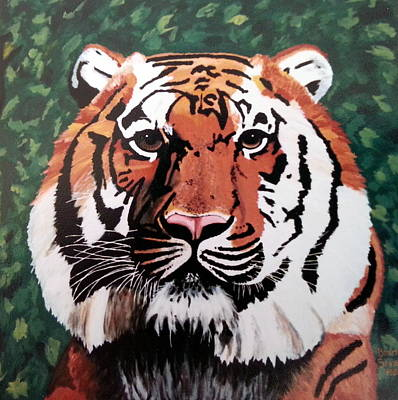 Truck Art Rights Managed Images - Tiger Royalty-Free Image by Brenda Stevens Fanning