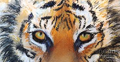 Drawing - Tiger Close Up by Michelle Wolff