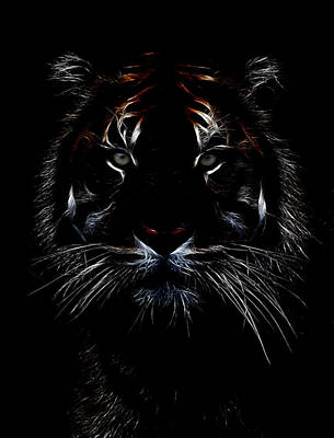 Tiger Fractal Photograph - Tiger Coming Out by Athena Mckinzie