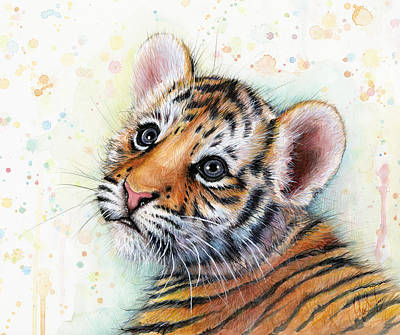 Tiger Wall Art - Painting - Tiger Cub Watercolor Art by Olga Shvartsur