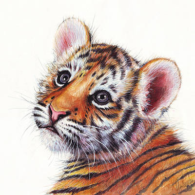 Nursery Mixed Media - Tiger Cub Watercolor Painting by Olga Shvartsur