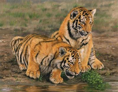 Animals Paintings - Tiger Cubs by David Stribbling