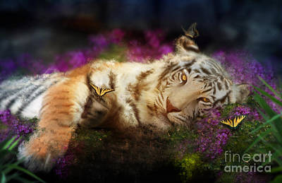 Fuschia Photograph - Tiger Dreams by Aimee Stewart