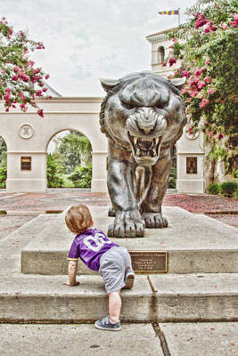 Louisiana State University Photograph - Tiger Dreams by Scott Pellegrin