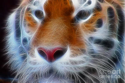 Tiger Fractal Photograph - Tiger Face Fractal by Gary Gingrich Galleries