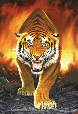 Tiger From The Embers Art Print by Chris Heitt