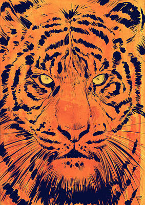Tiger Wall Art - Drawing - Tiger by Giuseppe Cristiano