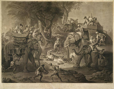 Tiger Hunt Photograph - Tiger Hunting In The East Indies by British Library