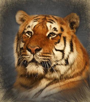 Digital Art - Tiger by Ian Merton