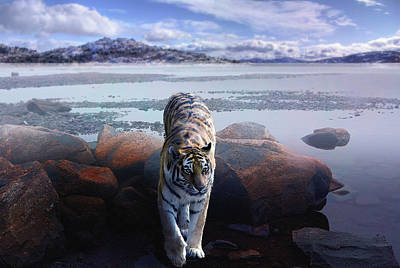 Mystical Landscape Mixed Media - Tiger In A Lake by Pati Photography
