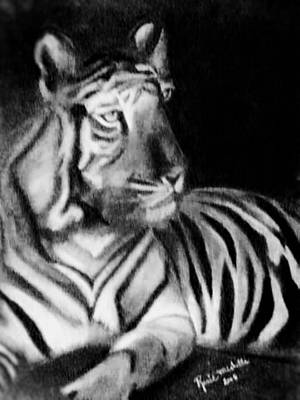 Drawing - Tiger In Black And White by Renee Michelle Wenker