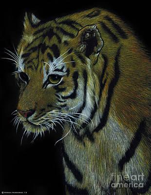 Tiger In The Dark  Art Print by Monica Margarida