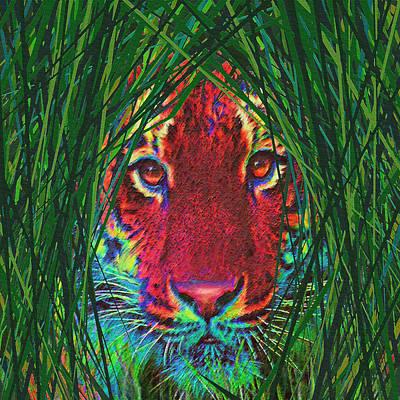 Asian Tiger Digital Art - Tiger In The Grass by Jane Schnetlage